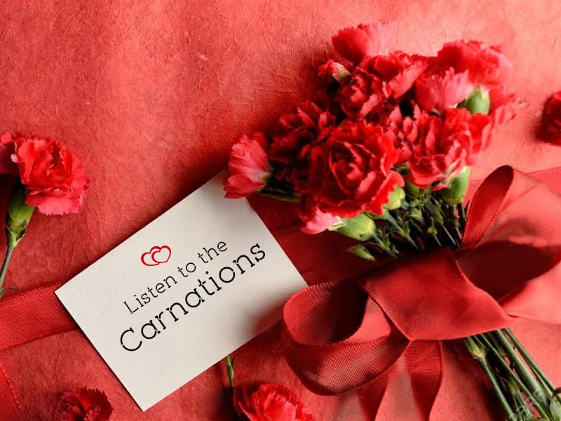 Carnations and Roses