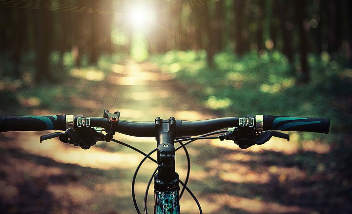 The Best Biking Trails Along the Coast of Maine