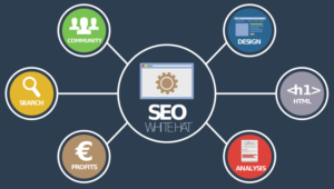 SEO Agency can Help a Business Get Orders