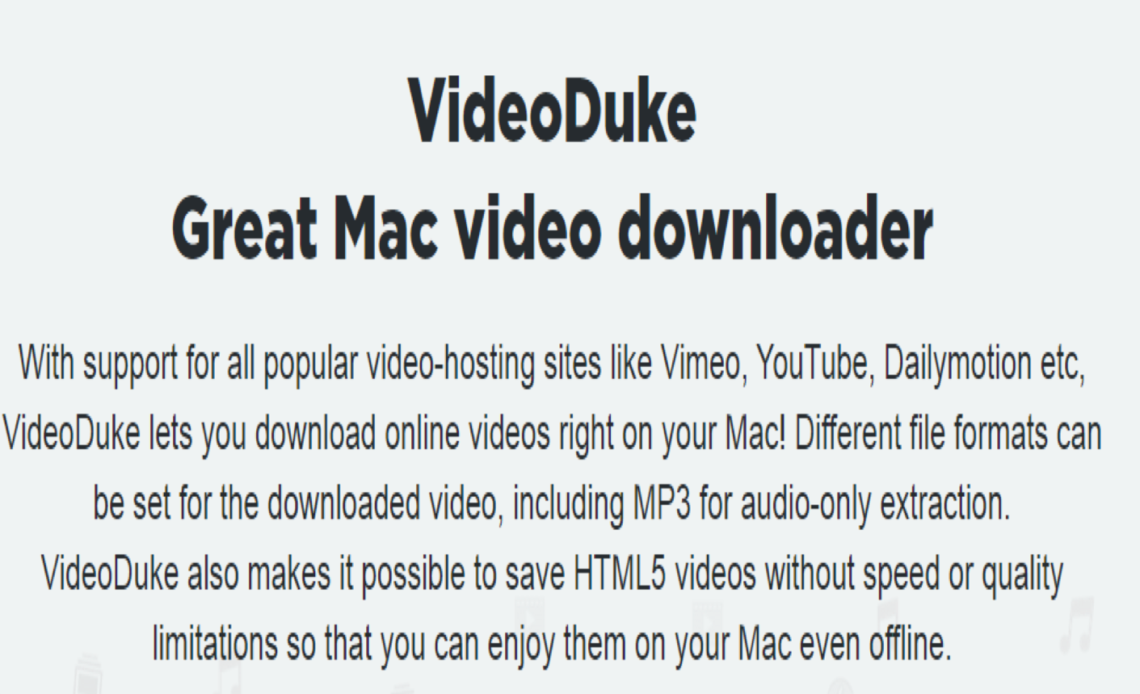 VideoDuke Review