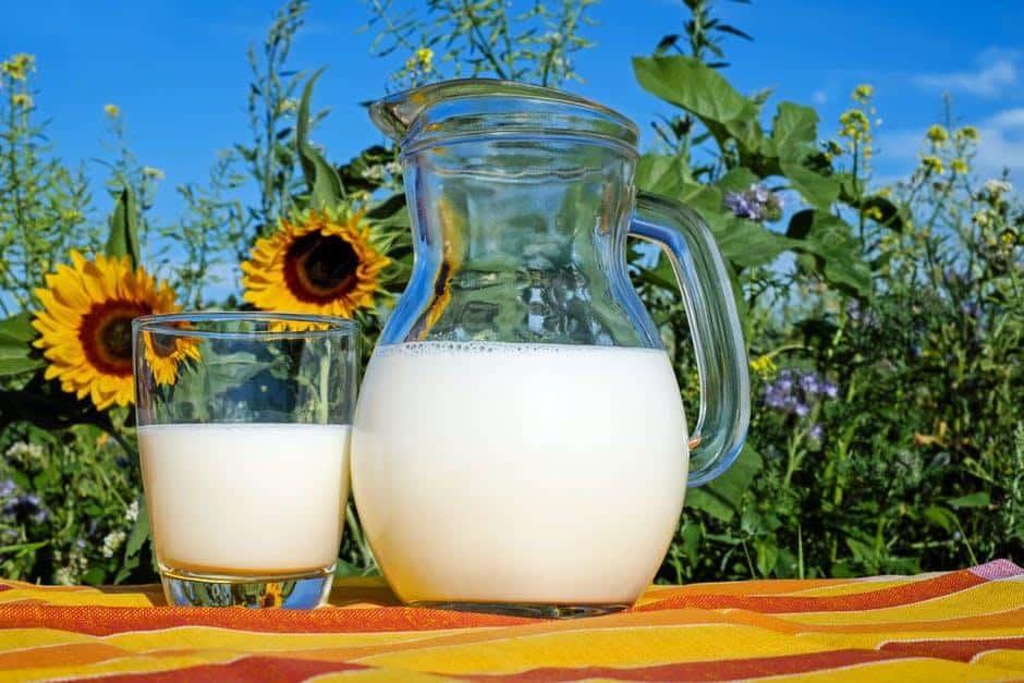 Camel Milk Is the New Low Allergen Alternative