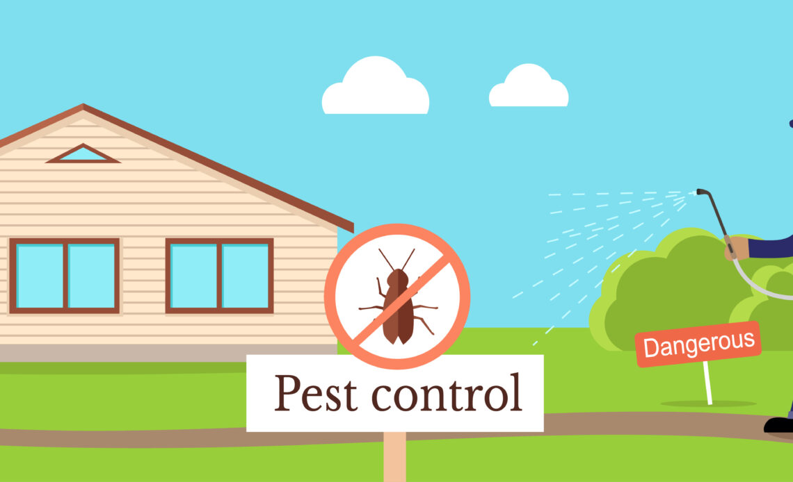 Top 6 Reasons you should hire Pest Control Services
